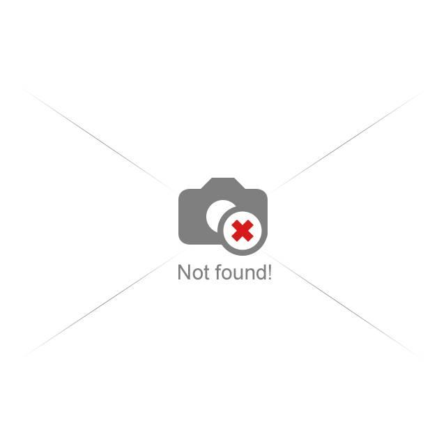 Moravia Rallye 2011