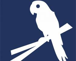 Za papoušky aklokany