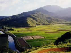 Srí Lanka - ostrov s vůní čaje